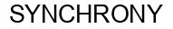 Международный товарный знак №1175376 SYNCHRONY