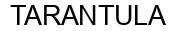 Международный товарный знак №1230273 TARANTULA