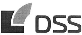 Товарный знак №328973 DSS
