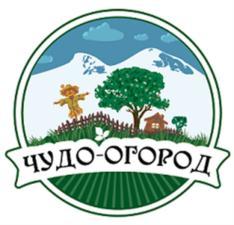 Товарный знак №582909 ЧУДО