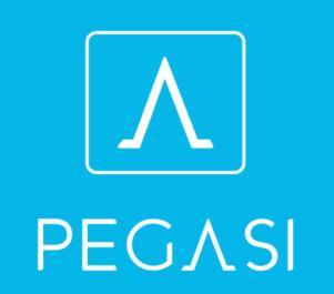 Товарный знак №755823 PEGASI
